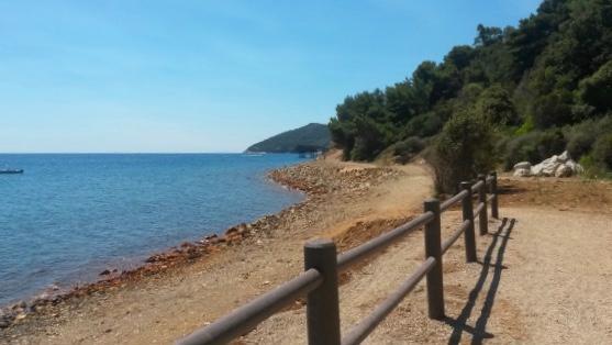 sentiero per la spiaggia la Vigneria, cose da fare all'isola d'Elba