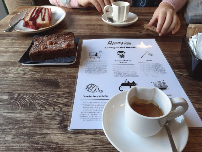colazione al Crazy Cat Café di Milano