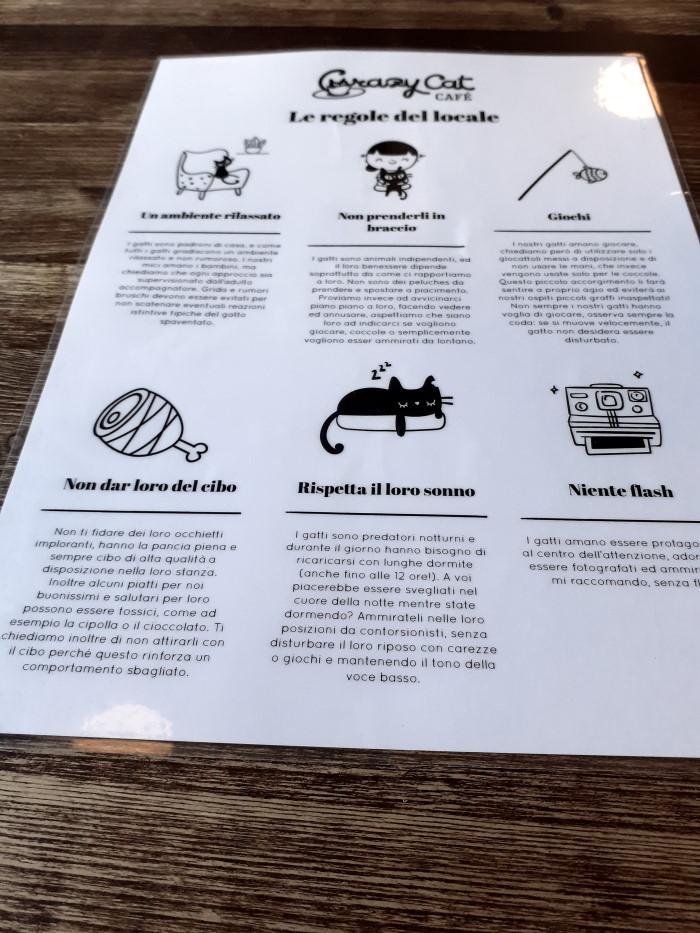 regole del Cat Café