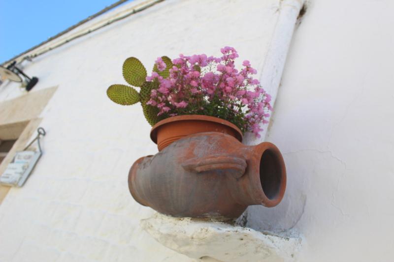 leggende di primavera, anfora con fiori ad Alberobello